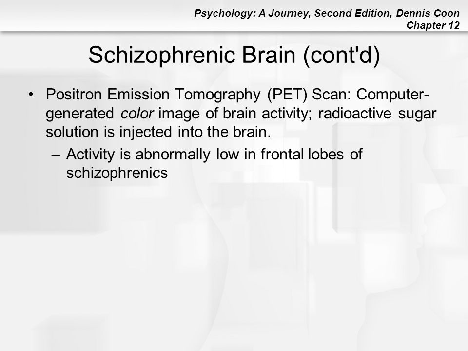 Schizophrenic Brain (cont d)