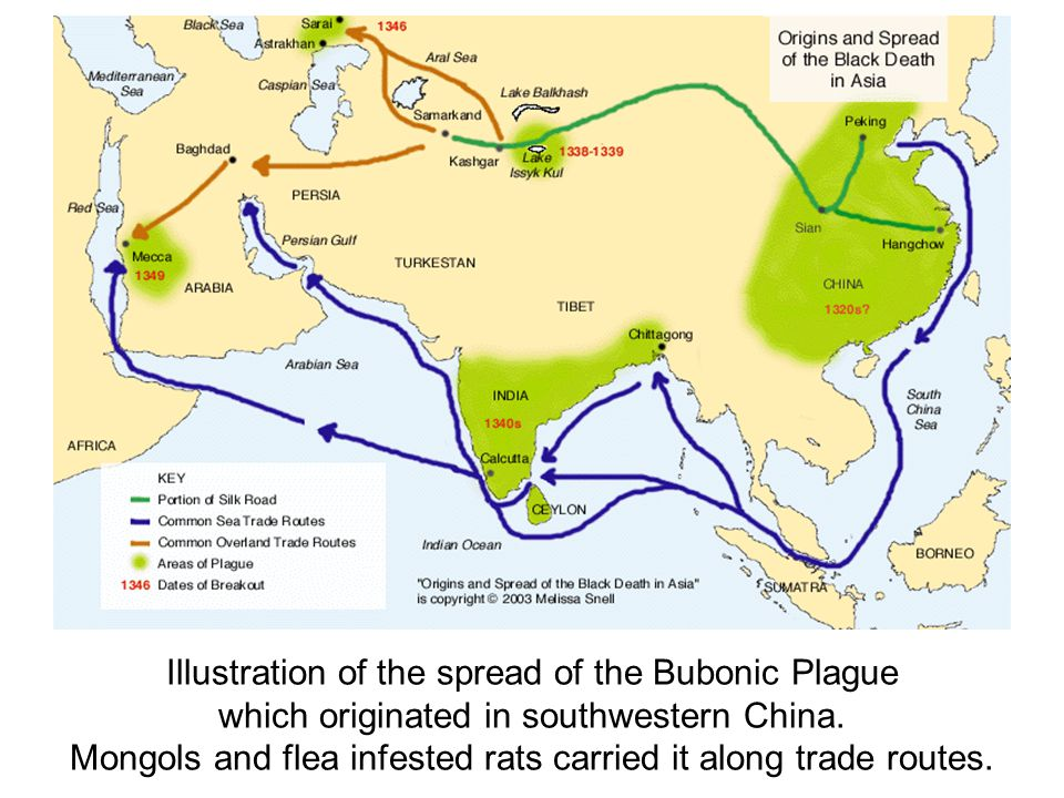 Illustration of the spread of the Bubonic Plague which originated in southwestern China.