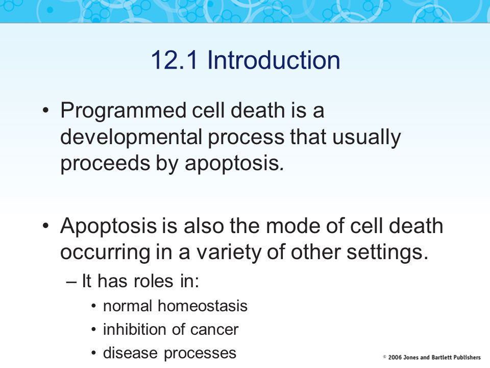 12.1 Introduction Programmed cell death is a developmental process that usually proceeds by apoptosis.