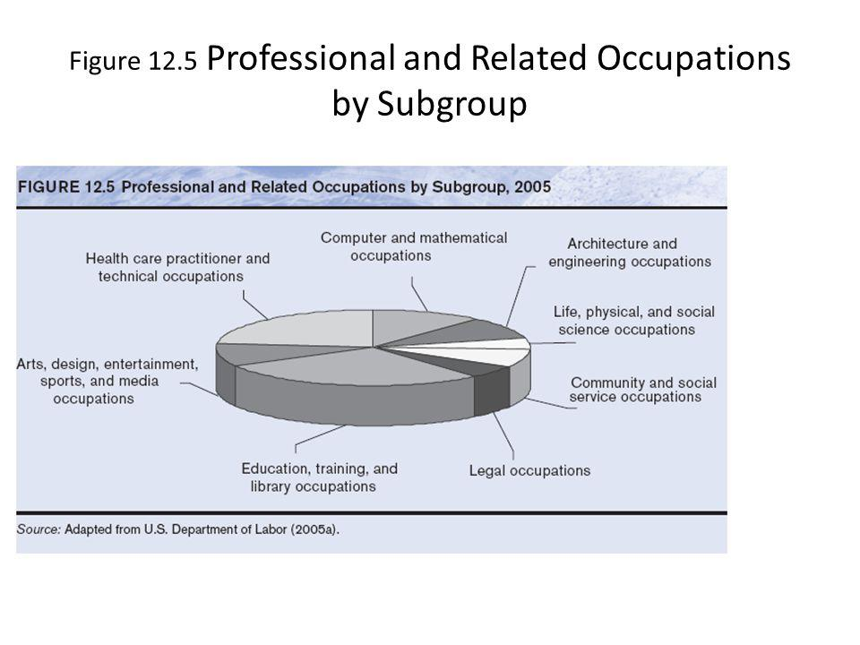 Figure 12.5 Professional and Related Occupations by Subgroup