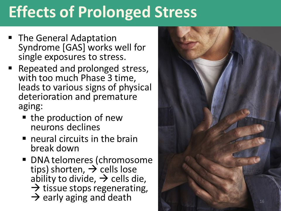 Effects of Prolonged Stress