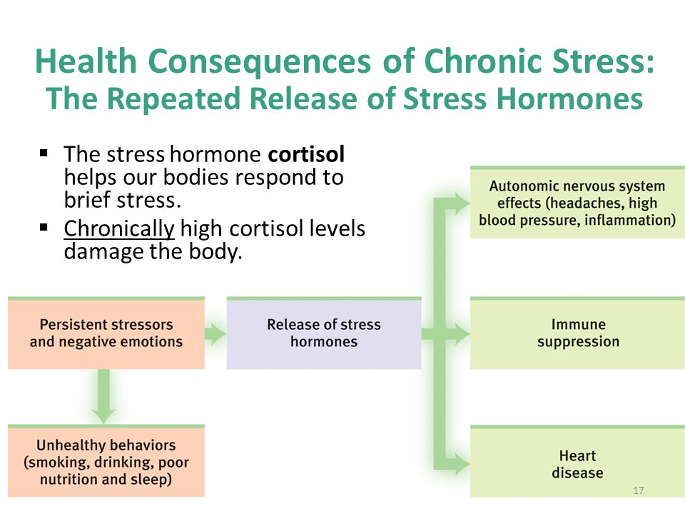Health Consequences of Chronic Stress: The Repeated Release of Stress Hormones