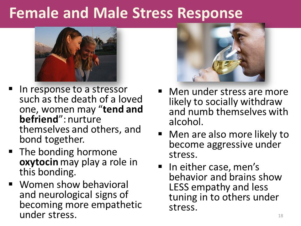 Female and Male Stress Response