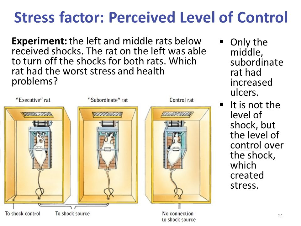 Stress factor: Perceived Level of Control