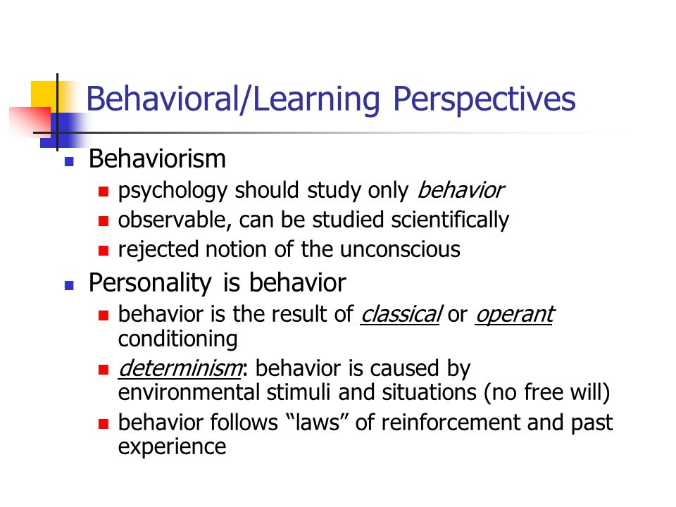 Behavioral/Learning Perspectives