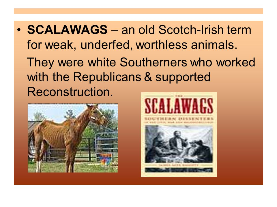 SCALAWAGS – an old Scotch-Irish term for weak, underfed, worthless animals.