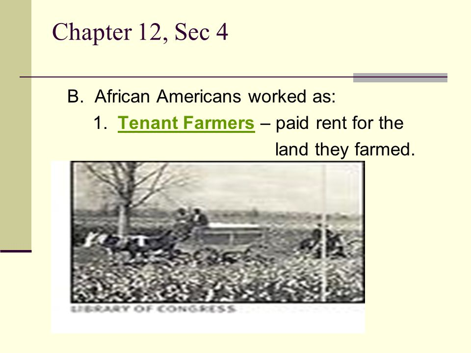 Chapter 12, Sec 4 B. African Americans worked as: