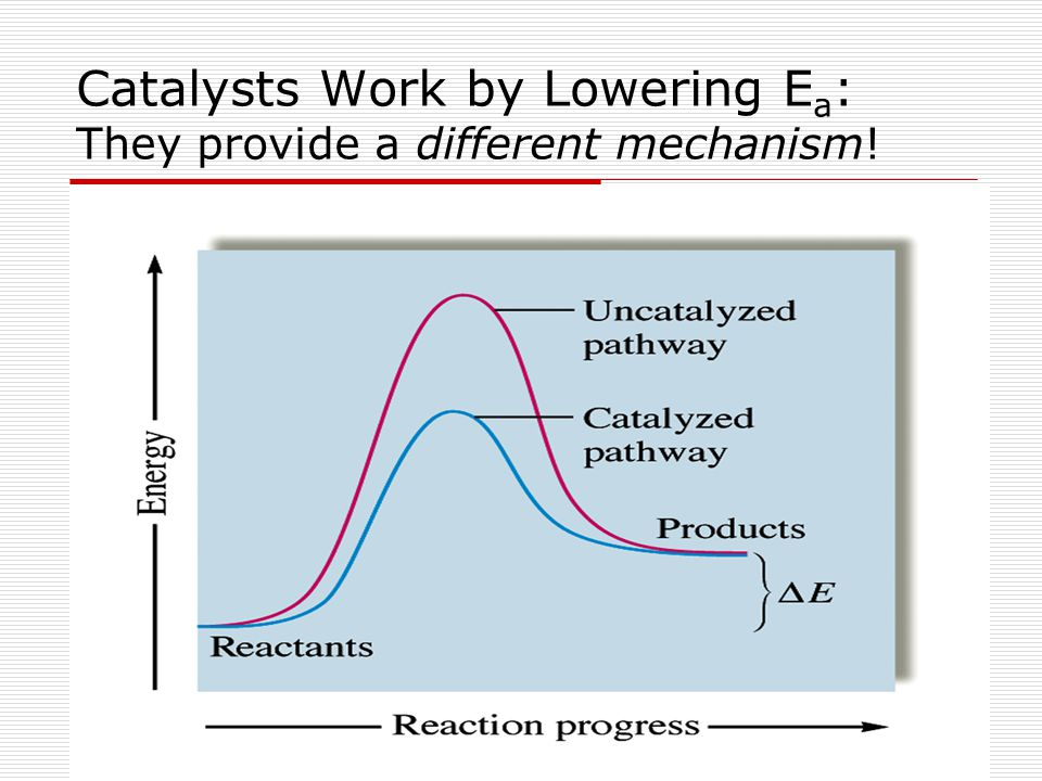 Catalysts Work by Lowering Ea: They provide a different mechanism!
