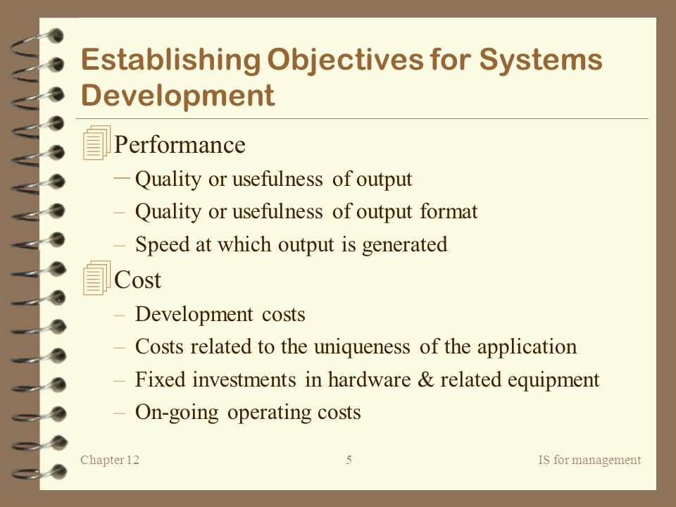 Establishing Objectives for Systems Development