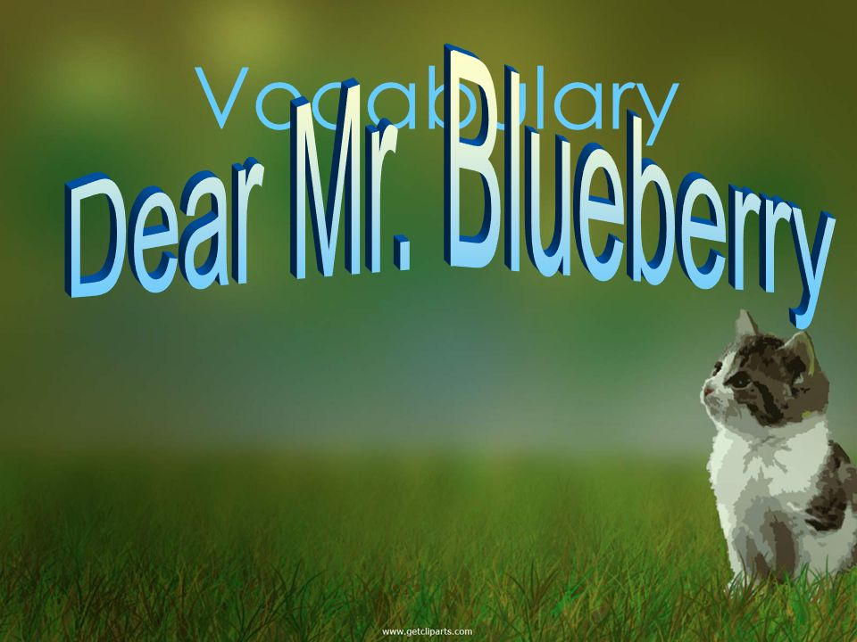 Vocabulary Dear Mr. Blueberry