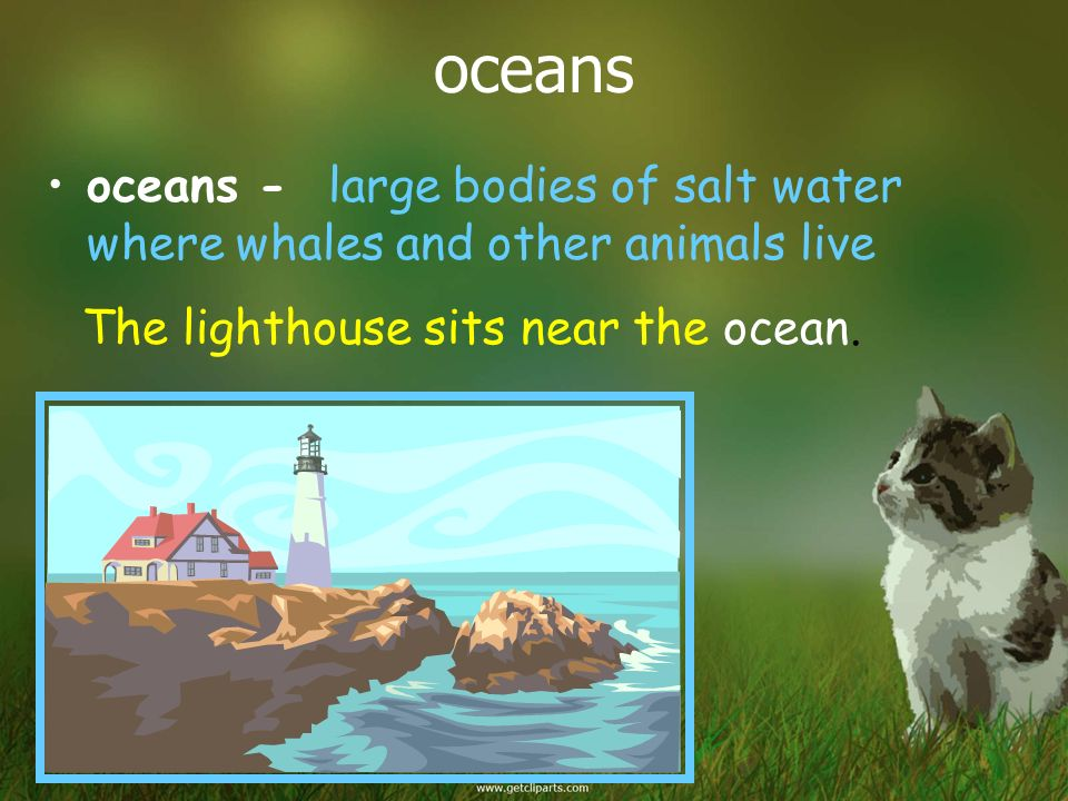 oceans oceans - large bodies of salt water where whales and other animals live.