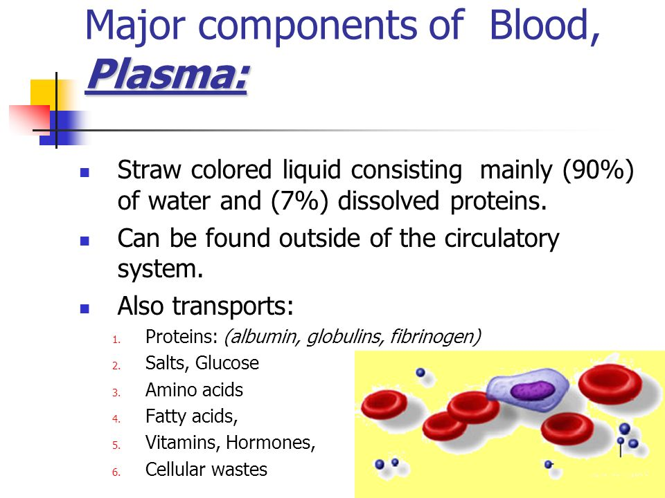 Major components of Blood, Plasma: