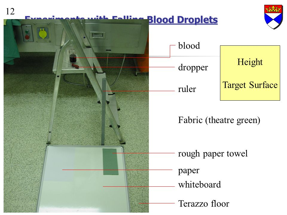 Experiments with Falling Blood Droplets