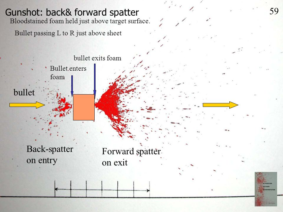 Gunshot: back& forward spatter