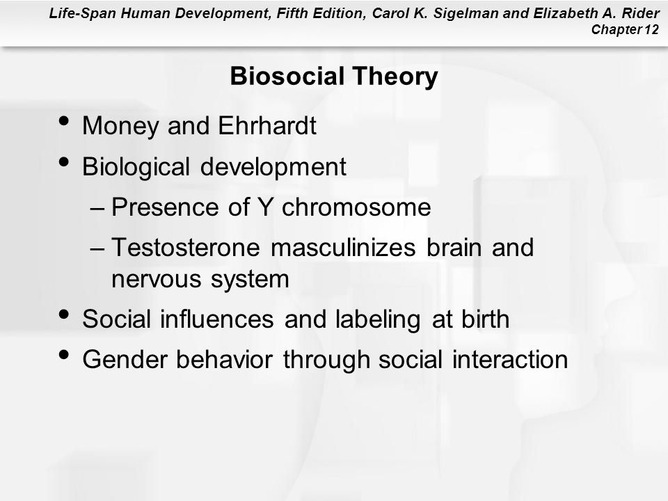 Biosocial Theory Money and Ehrhardt. Biological development. Presence of Y chromosome. Testosterone masculinizes brain and nervous system.