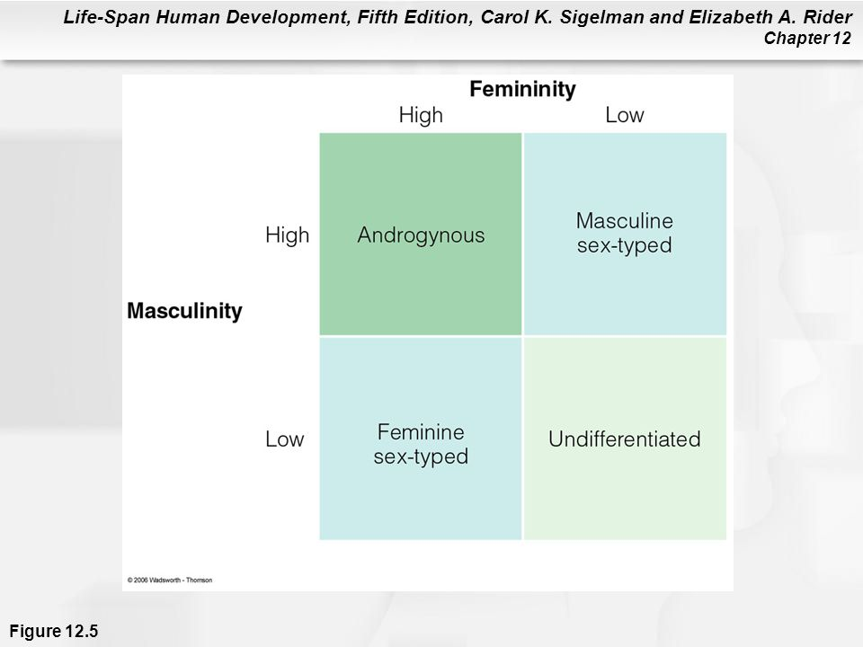 Figure 12.5 Categories of gender-role orientation based on viewing masculinity and femininity as separate dimensions of personality.