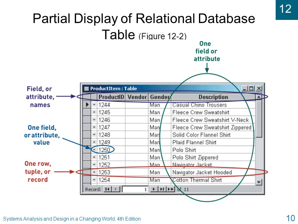 Partial Display of Relational Database Table (Figure 12-2)