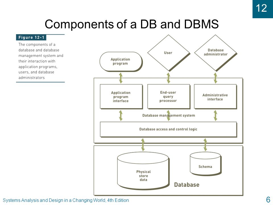 Components of a DB and DBMS