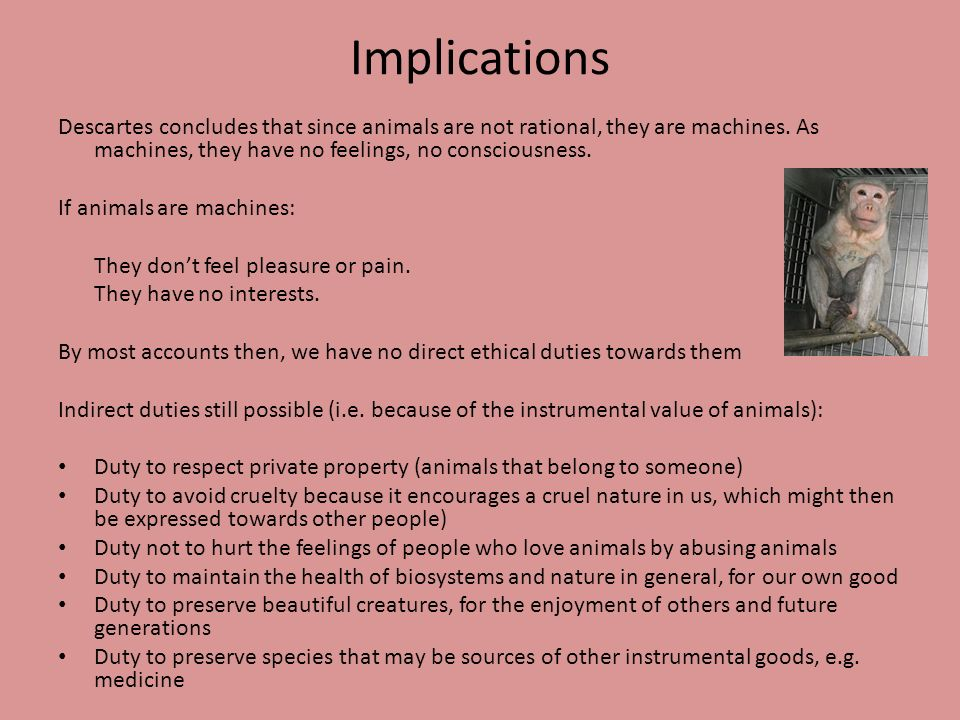 ImplicationsDescartes concludes that since animals are not rational, they are machines. As machines, they have no feelings, no consciousness.