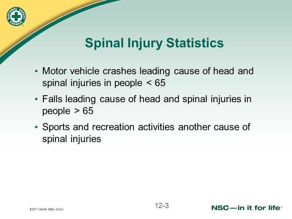 Spinal Injury Statistics