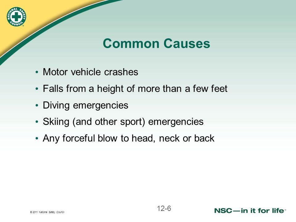 Common Causes Motor vehicle crashes