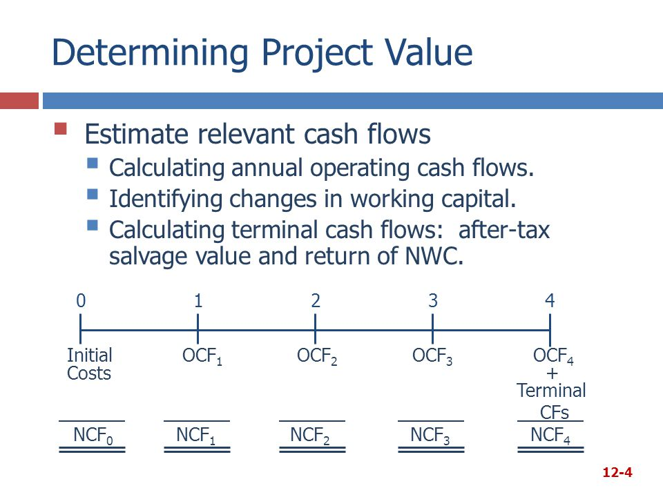 Determining Project Value
