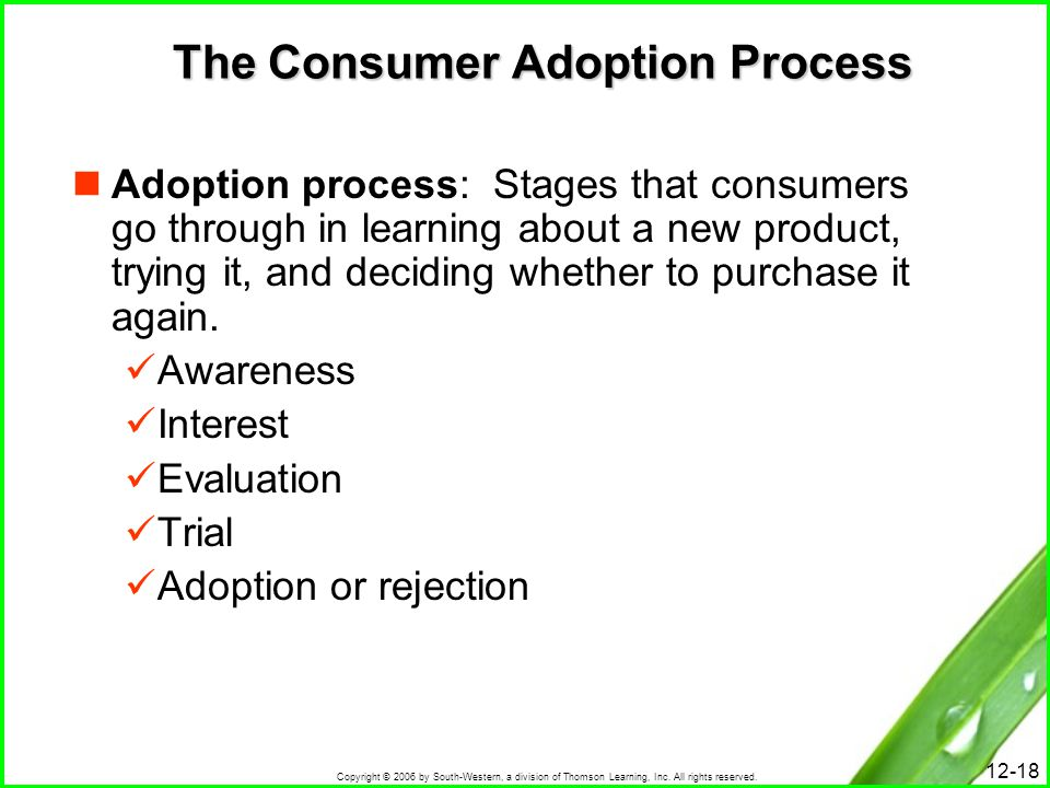 The Consumer Adoption Process