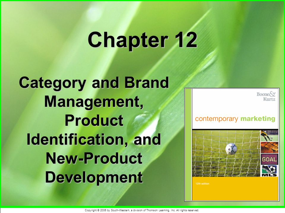 Chapter 12 Category and Brand Management, Product Identification, and New-Product Development