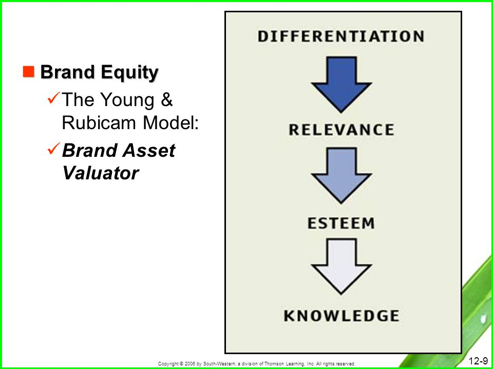 Brand Equity The Young & Rubicam Model: Brand Asset Valuator