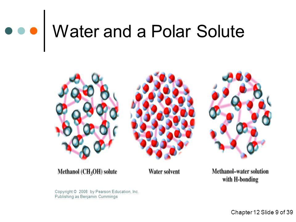 Water and a Polar Solute