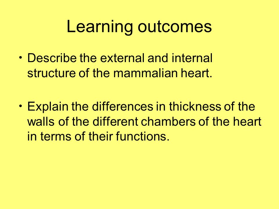 Learning outcomes Describe the external and internal structure of the mammalian heart.