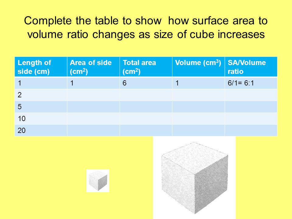 Complete the table to show how surface area to volume ratio changes as size of cube increases