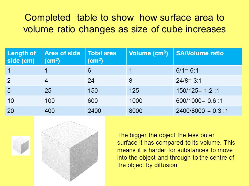 Completed table to show how surface area to volume ratio changes as size of cube increases