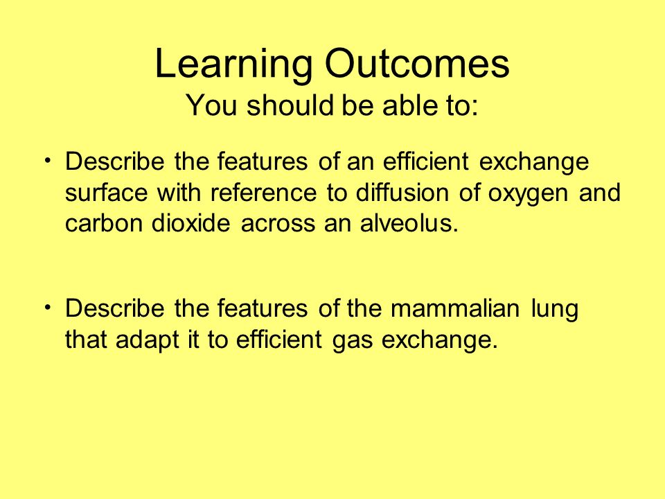 Learning Outcomes You should be able to: