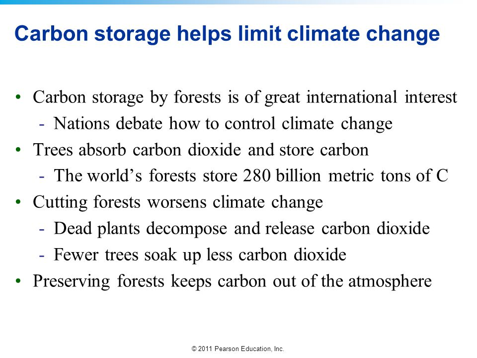 Carbon storage helps limit climate change