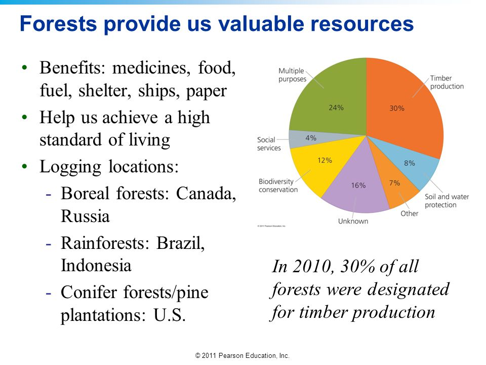 Forests provide us valuable resources