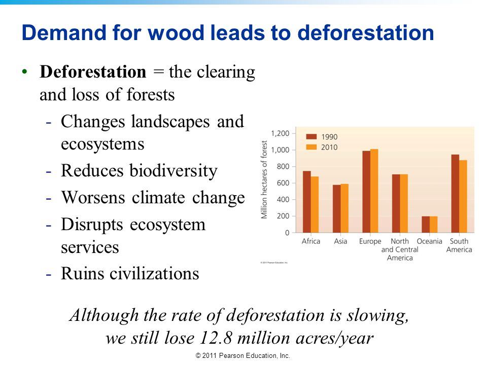 Demand for wood leads to deforestation