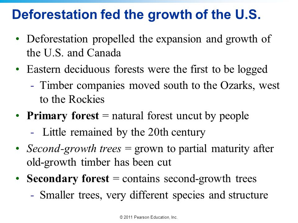 Deforestation fed the growth of the U.S.