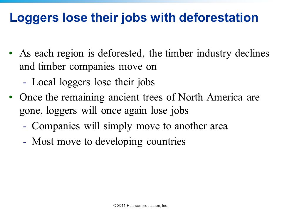 Loggers lose their jobs with deforestation