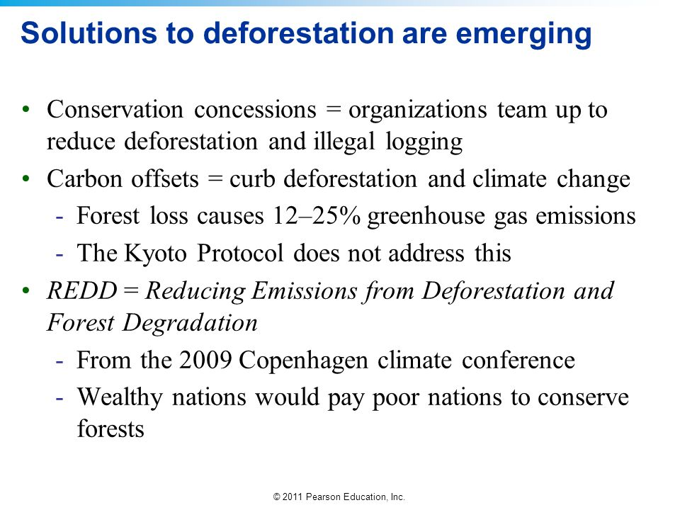 Solutions to deforestation are emerging