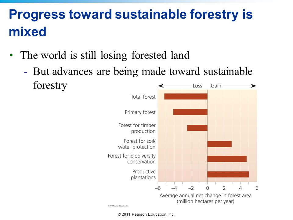 Progress toward sustainable forestry is mixed