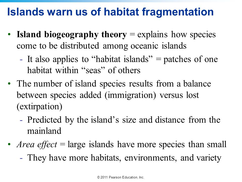 Islands warn us of habitat fragmentation