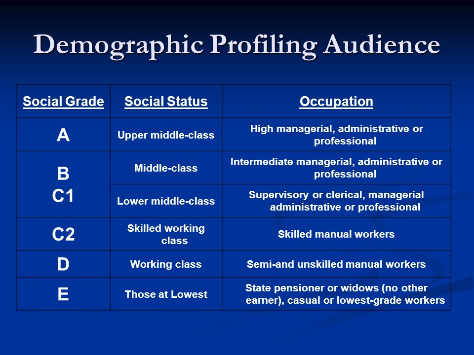 Demographic Profiling Audience