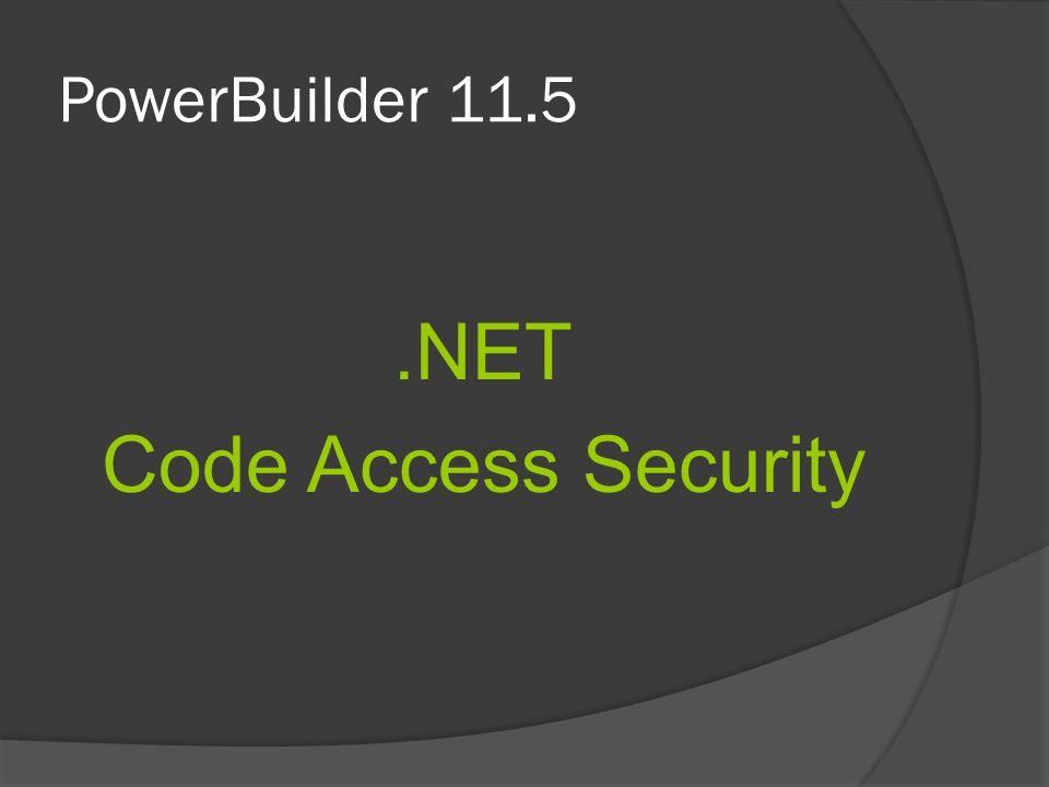 PowerBuilder 11.5 .NET Code Access Security
