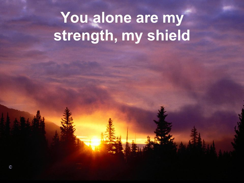 You alone are my strength, my shield