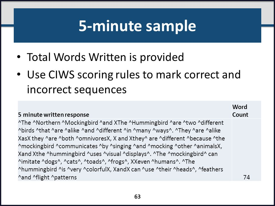 5-minute sample Total Words Written is provided
