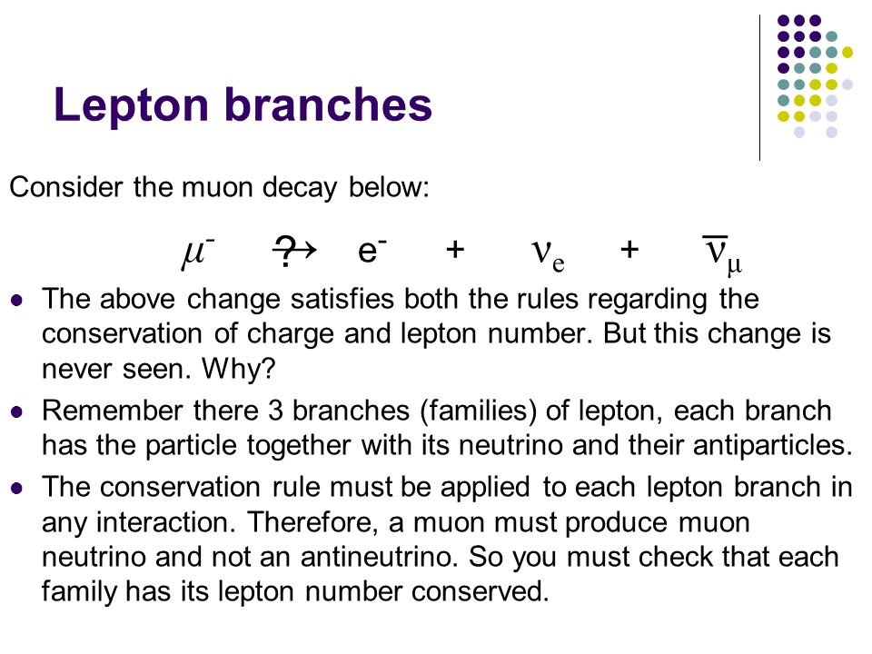 Lepton branches μ- → e- + νe + νμ _ Consider the muon decay below: