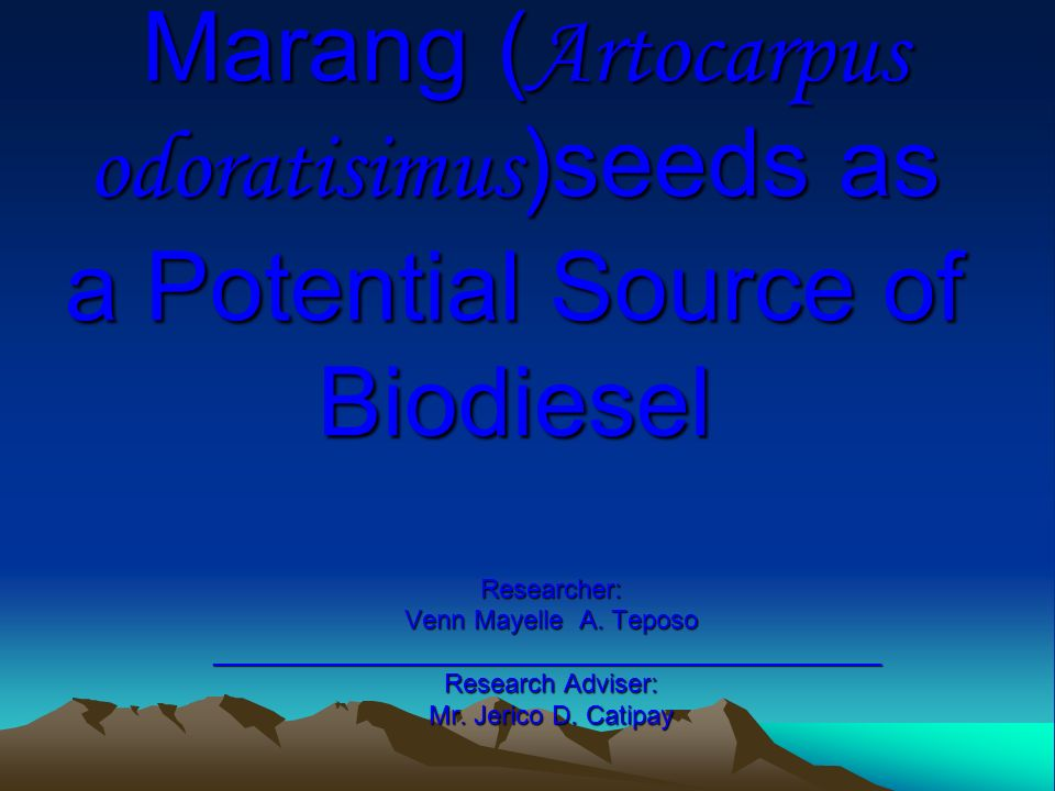 Marang (Artocarpus odoratisimus)seeds as a Potential Source of Biodiesel