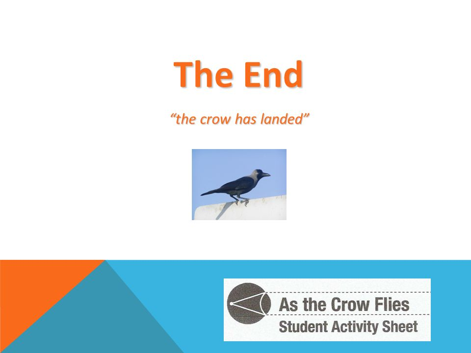 The End the crow has landed