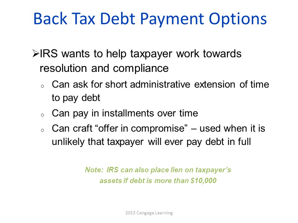 Back Tax Debt Payment Options